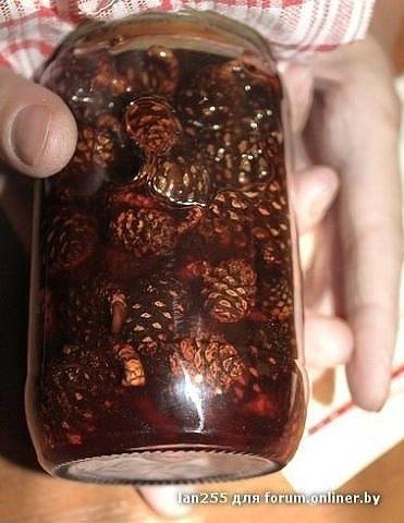 Варенье из сосновых шишек — сосновый мед
